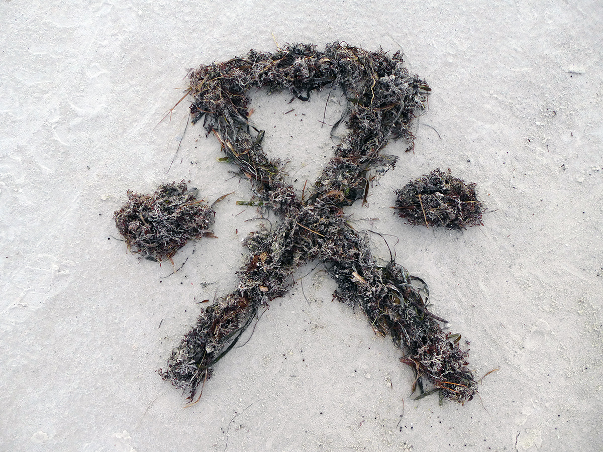 FOREVER OUTSIDE symbol made of seaweed, thanks for the help Nancy!