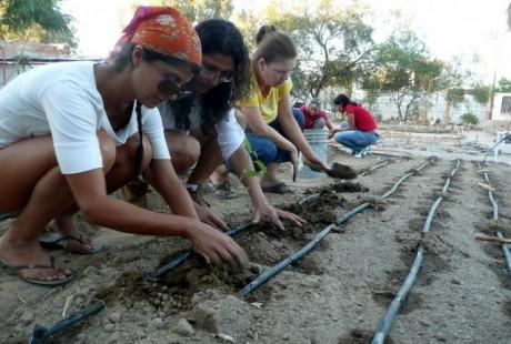 jardin-comunitario-educacion-ambiental-huertos-proyecto-christy-walton.jpg