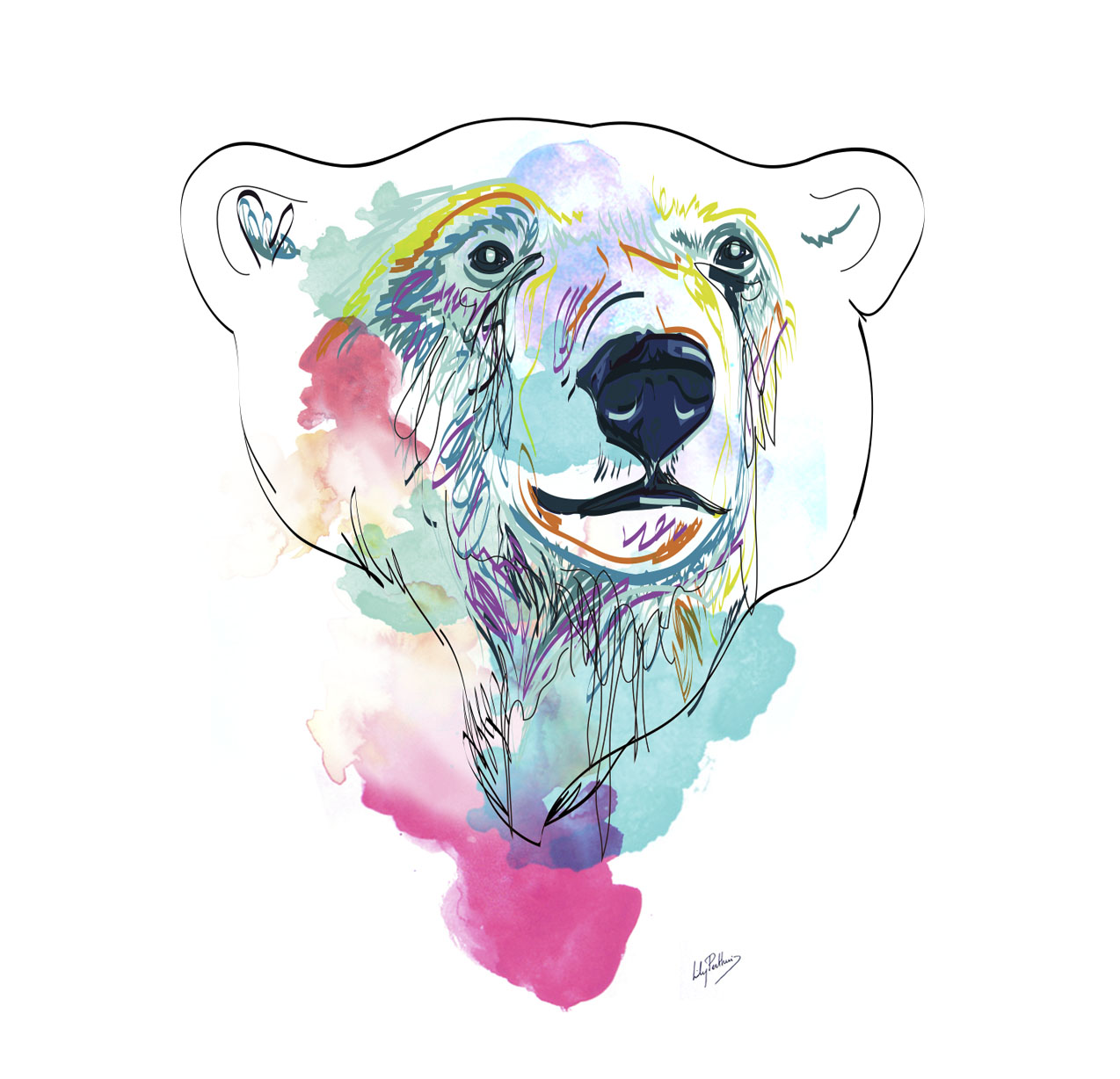 bear-drawing.jpg