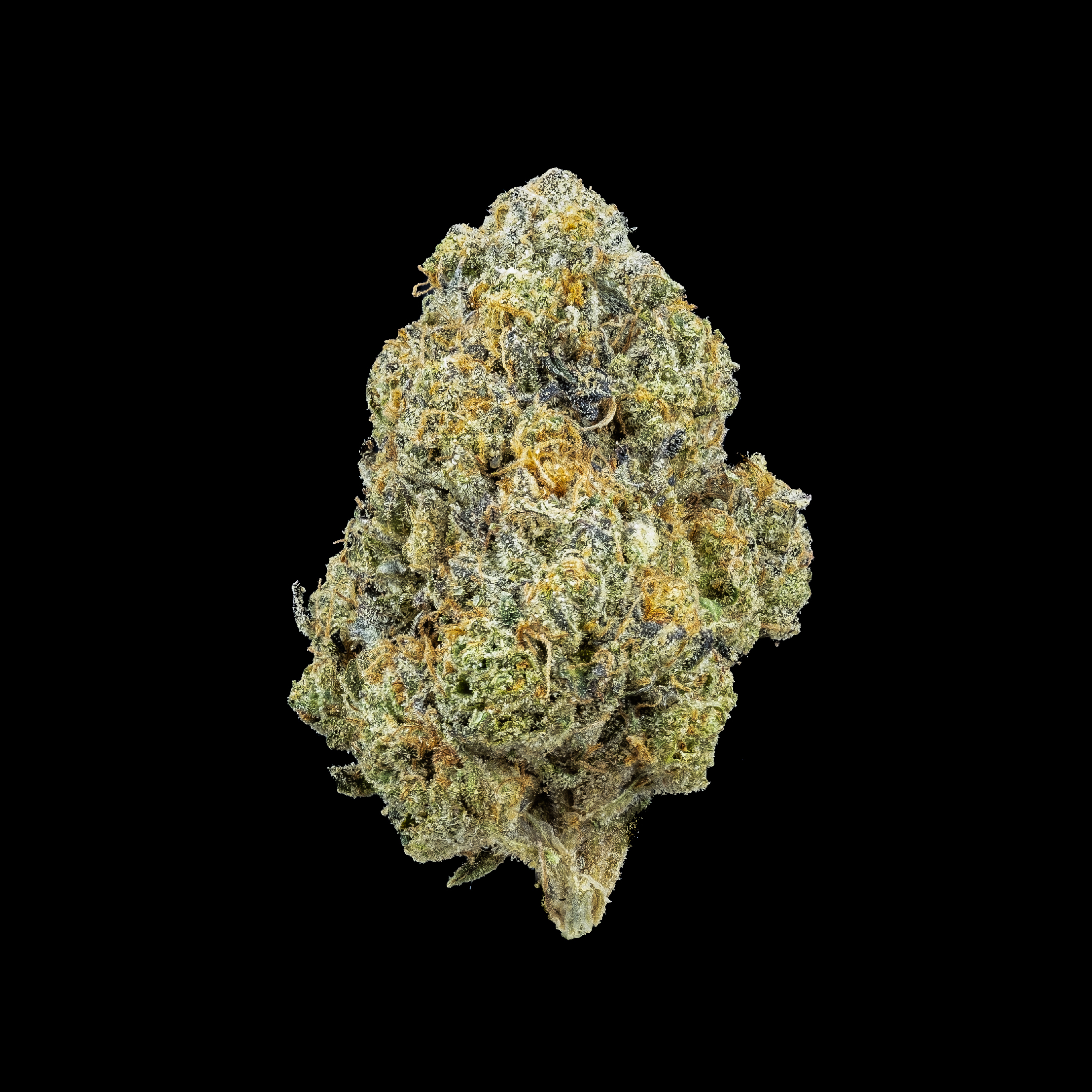 JETLATO - With super gassy kick of Jetfuel OG, softened with the sweet aftertaste of Gelato. Jetlato is a perfect afternoon smoke. This indica dominant hybrid is a great way to end you day but with enough fuel to start up your evening.