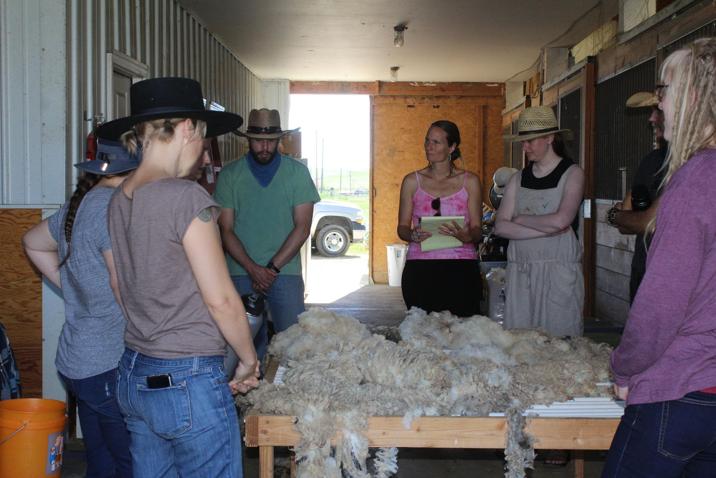 Skirting fleece