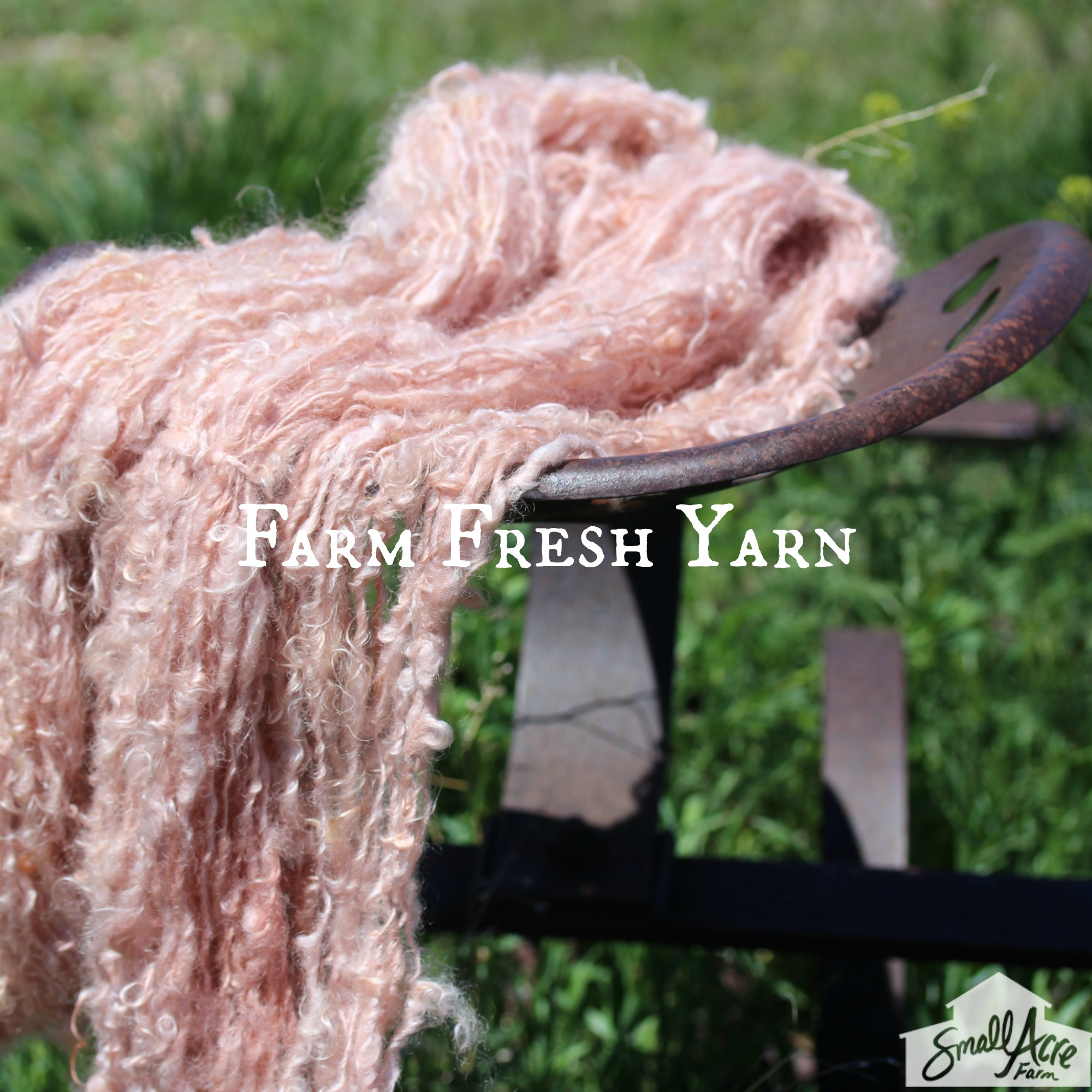 Farm Fresh Yarn with logo.jpg