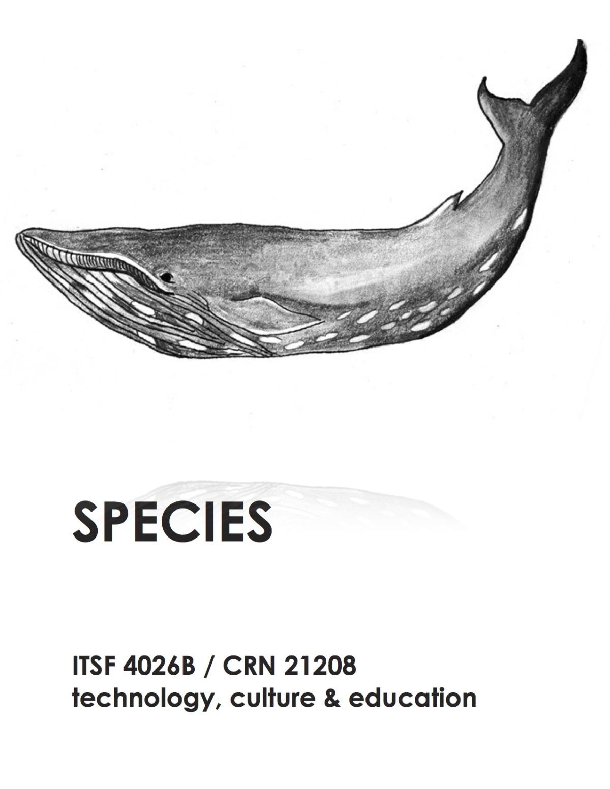 itsf 4026b flyers - species.jpg