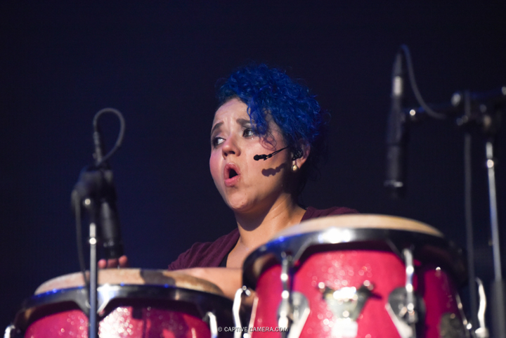 Nov. 21, 2015 (Toronto, ON) - Percussionist of Venezuelan duo Chino & Nacho during their performance at Sound Academy.