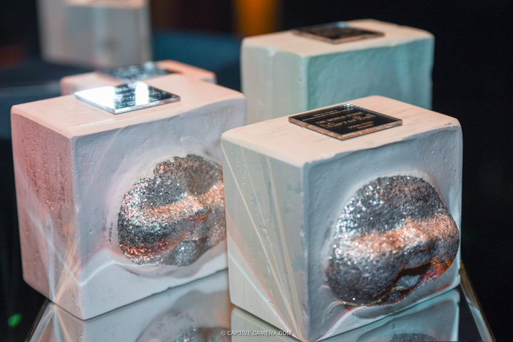 20160130 - World Stage Mirror Ball - Vogue Runway - Toronto Event Photography - Captive Camera - Jaime Espinoza-4.JPG