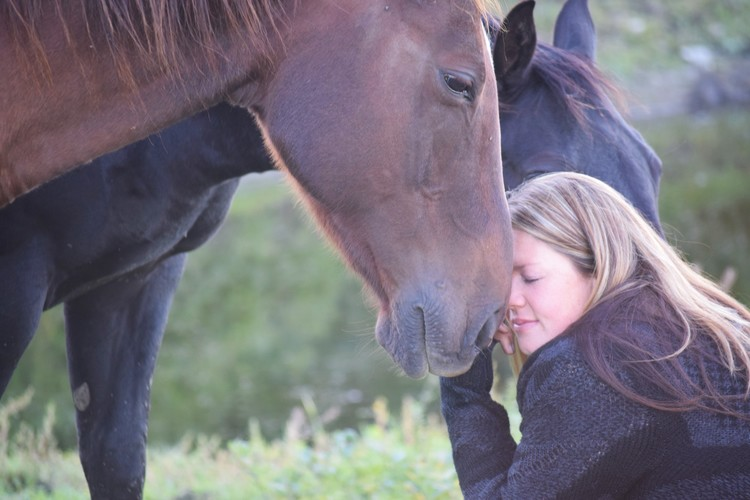 Workshops - Discover the unique ways in which equines can assist you in your personal growth and development, or simply find ways to deepen your connection with equines in your life.