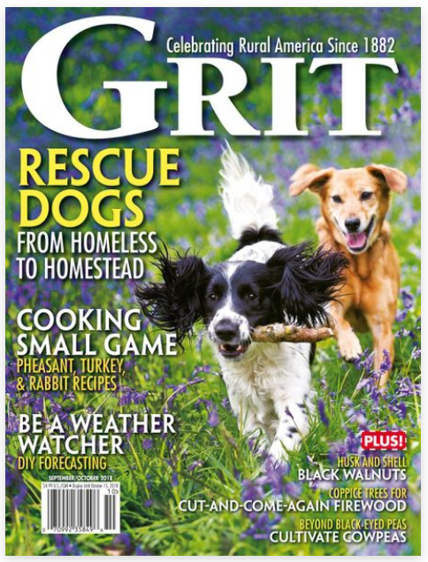 Get Crackin' - How to Husk, Crack, and Shell Black Walnuts - This article appeared in the September / October issue of GRIT Magazine.