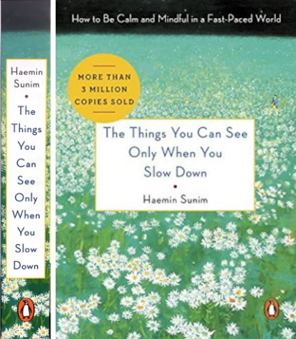 The Things You Can See When You Slow down  Cover design by Roseanne Serra