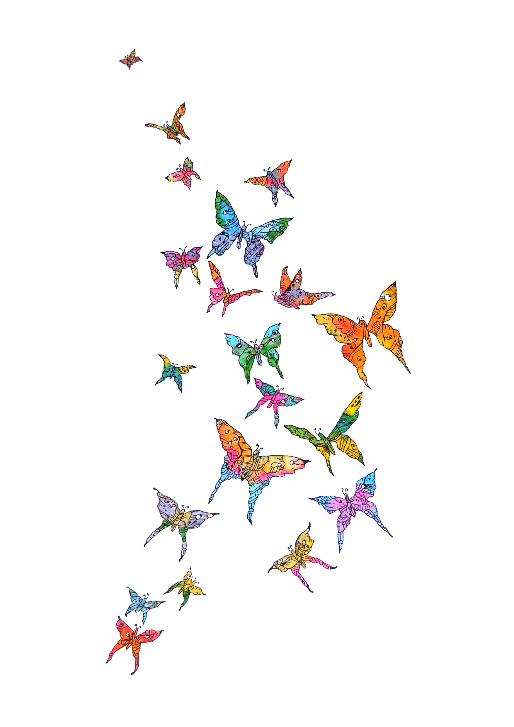 Freedom  Butterflies