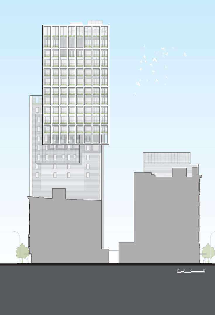 39 W23rd Street | East Elevation Illustration by Rob Cleary