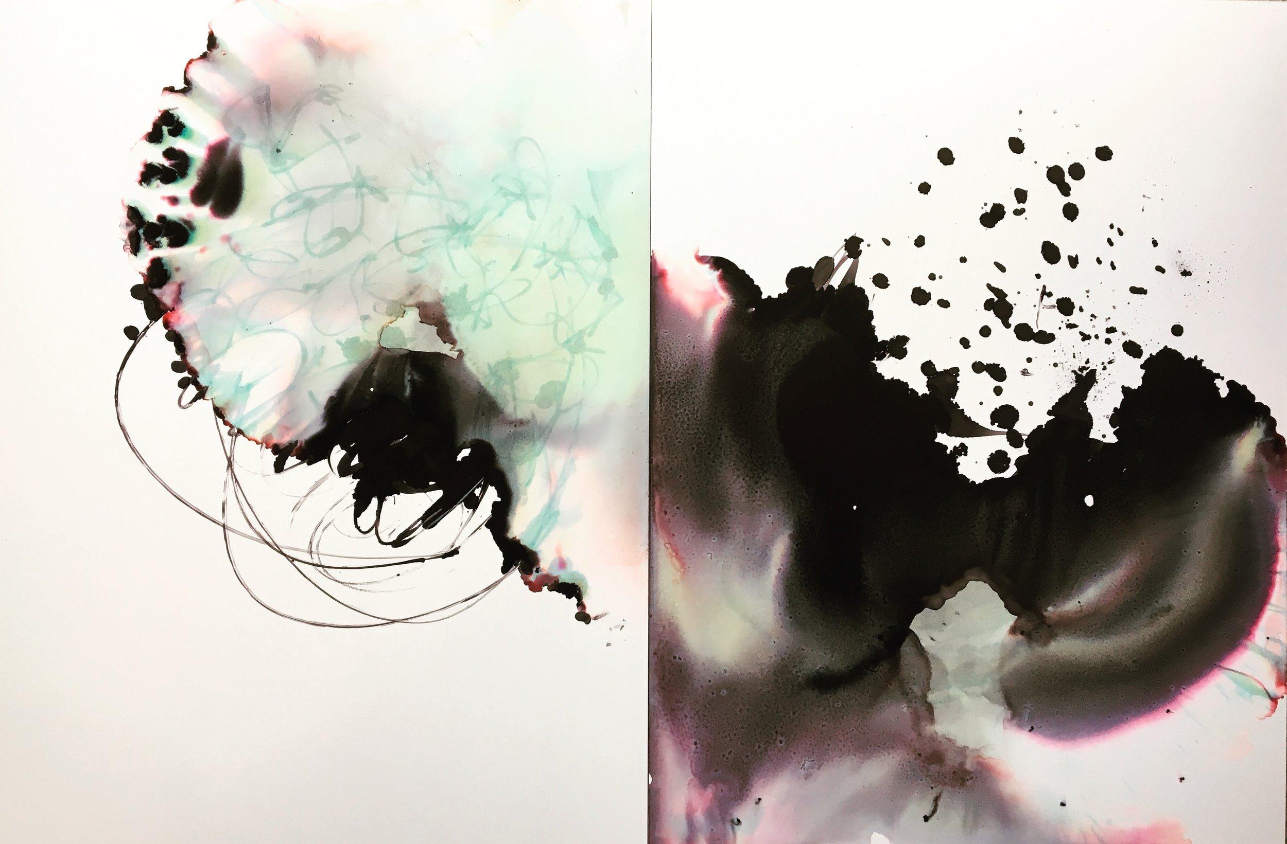 Turbulent Diptych  22x14