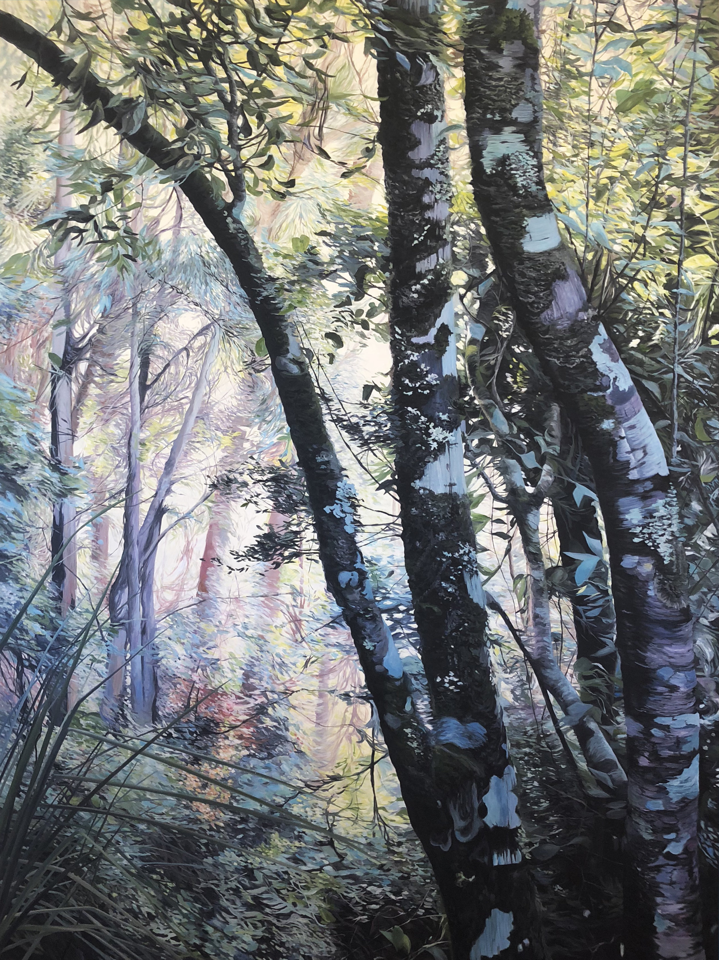 Cooling Glade  Oil on Canvas 163cm x 121cm $13,000  View Brisbane