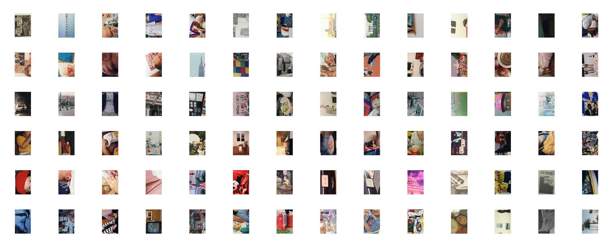 CROPS111.8-45.jpg
