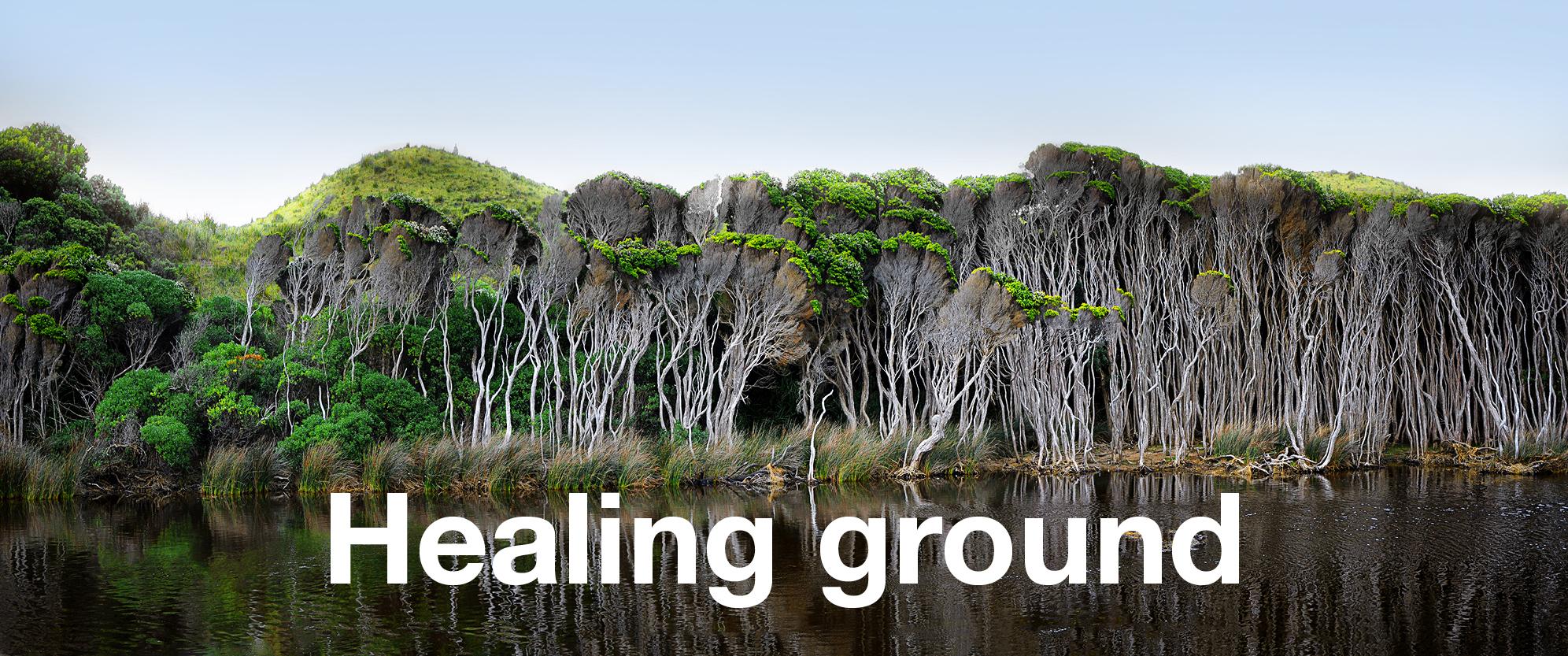 healing-ground.jpg