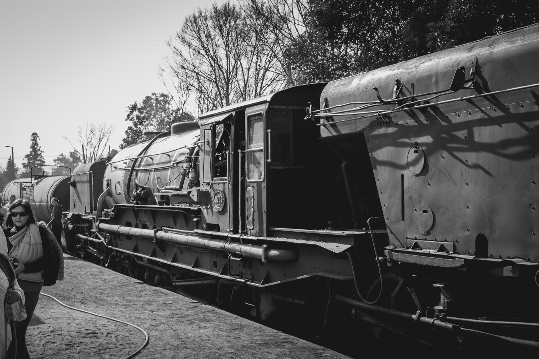 Creighton Steam Train-2.jpg