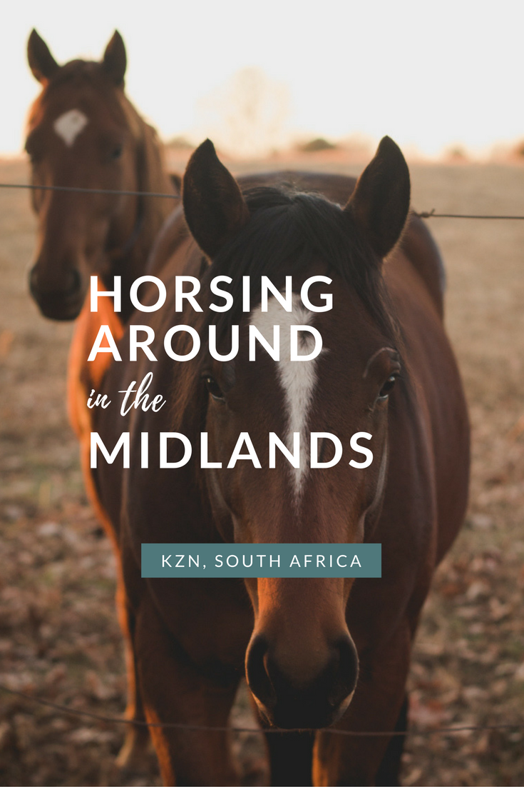 horsing-around-in-the-midlands