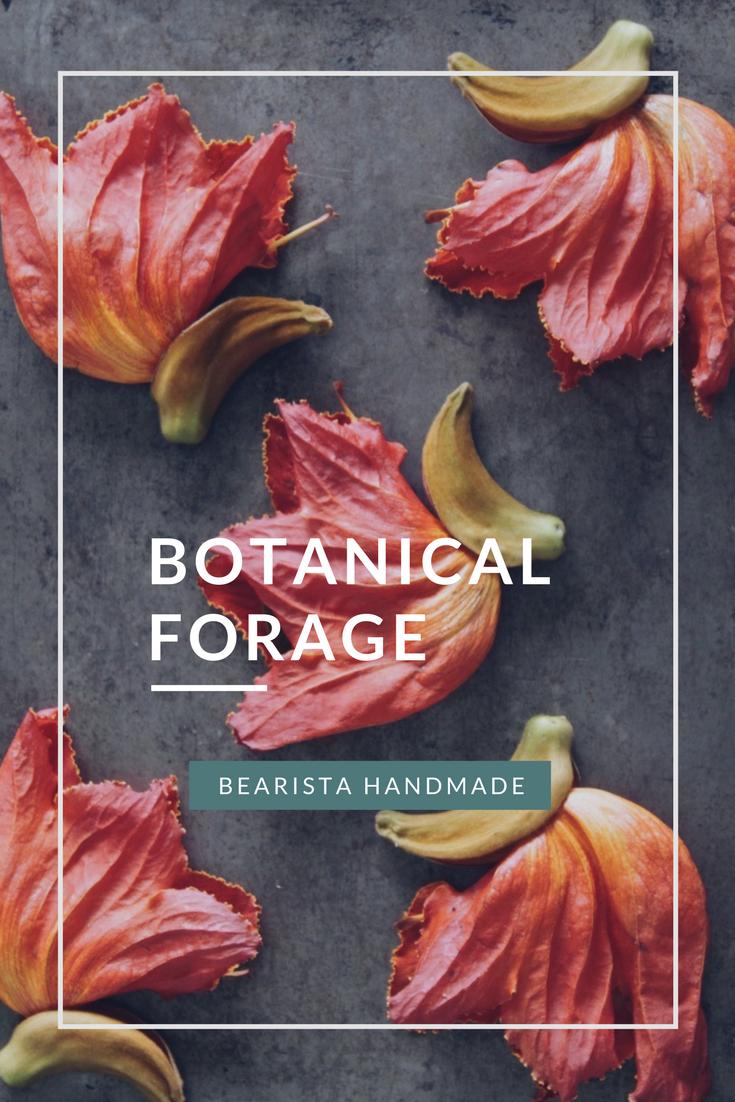 botanical-forage