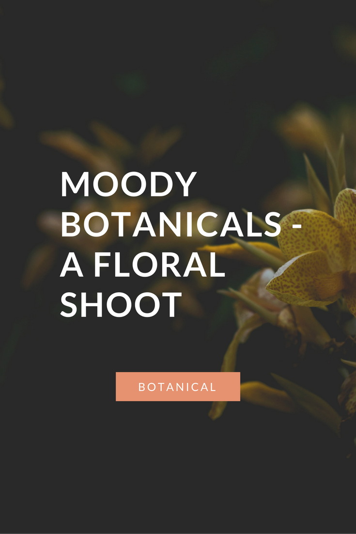 floral-photography
