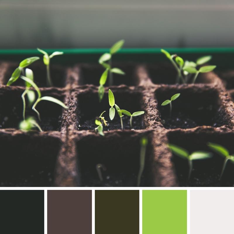Harry Gwala Agri Colour Palette.jpg