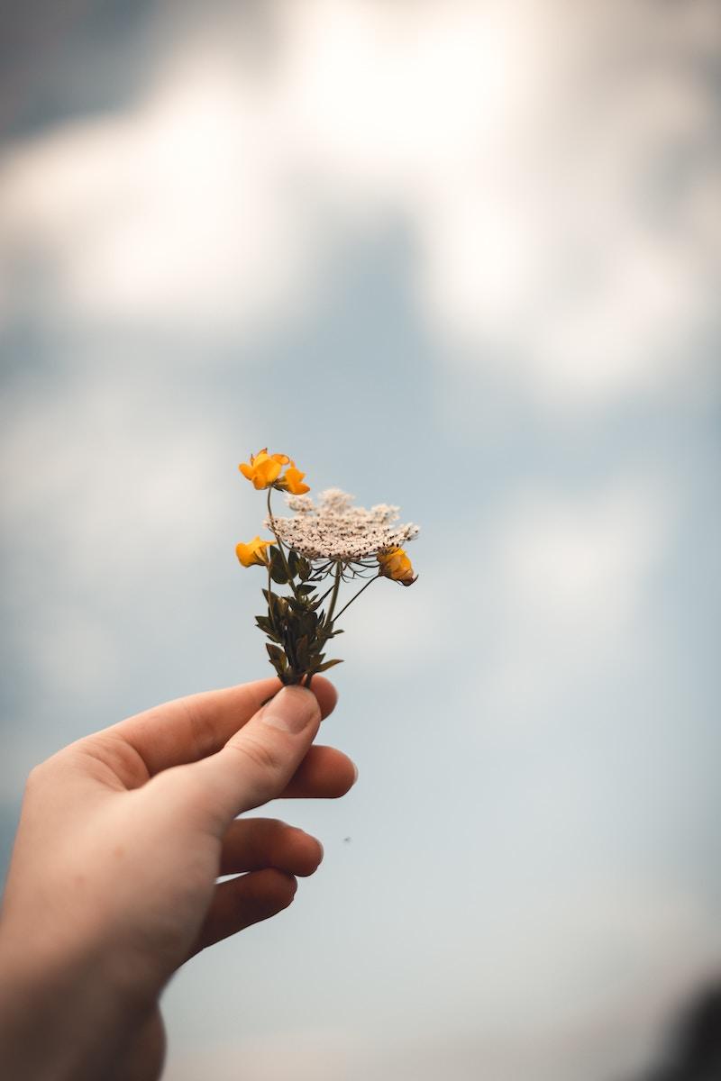 flower-in-hand.jpg