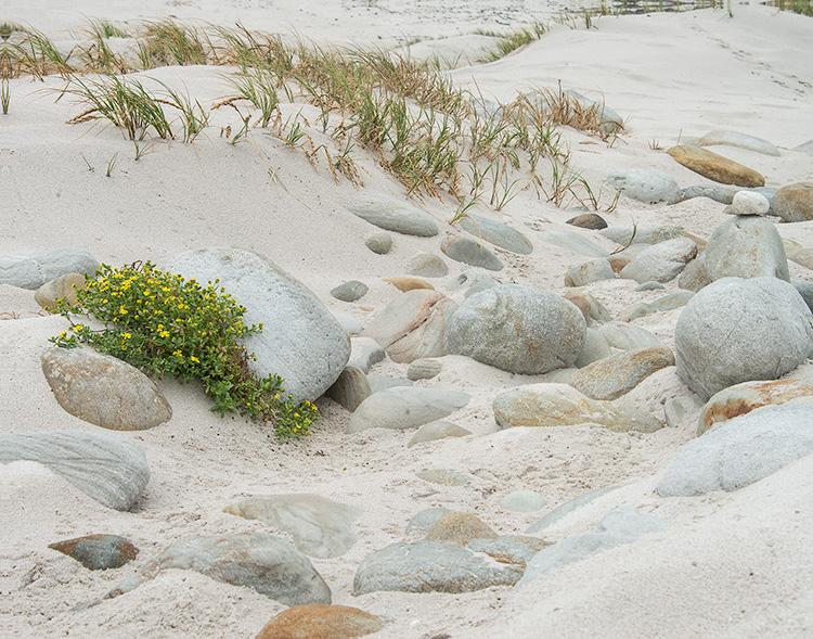 Beachrocks wb.jpg