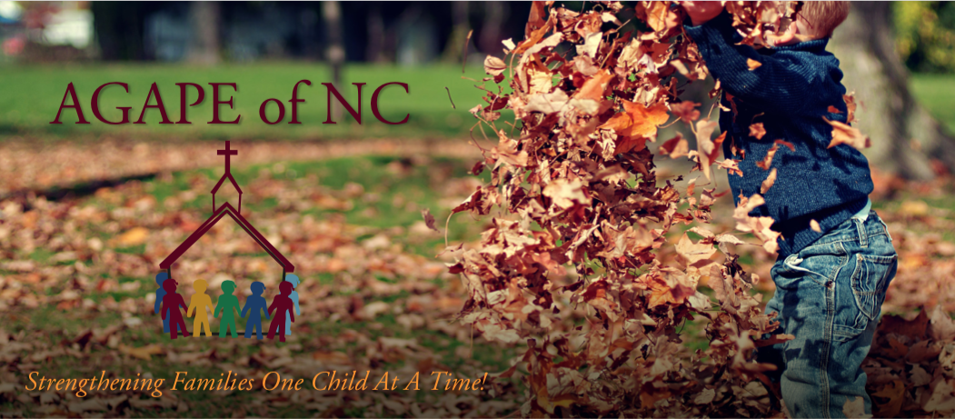 Read about the wonderful things going on this quarter at AGAPE of NC in our  current Newsletter .