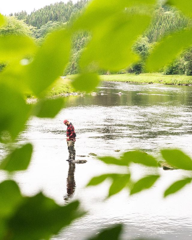 """After 14 years of fishing this river I have learned nothing absolute. If you ask the Ghillie (river keeper) for advice, he will tell you in deep Scottish accent, """"Ahhhrggg, de nay matter."""" You might as well get back in the water and keep overthinking it like every salmon fisherman ever. . . . . . . . . #flyfishing #fishing #speycasting #speyfishing #riverspey #atlanticsalmon #seatrout #scotland #sottishsalmon #salmon #swing #skagit #scandi #skagitcasting #scandicasting"""