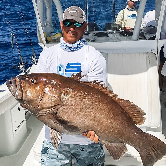 Nice snowy grouper coming out of Marathon. What is at the end of your line this weekend? Stop Fishing, Start Catching.
