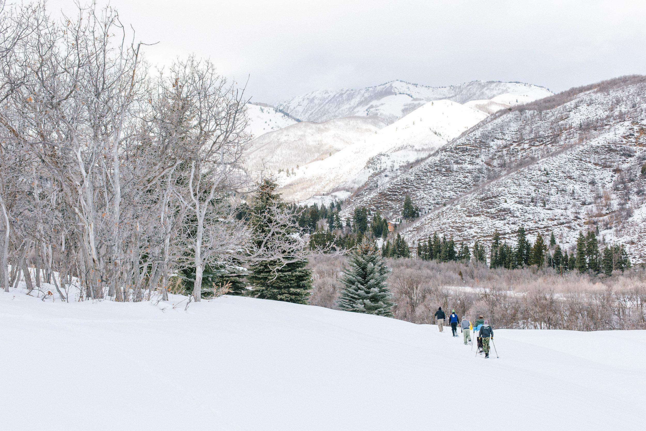 daidrismythephotography_snowshoeing-21.jpg