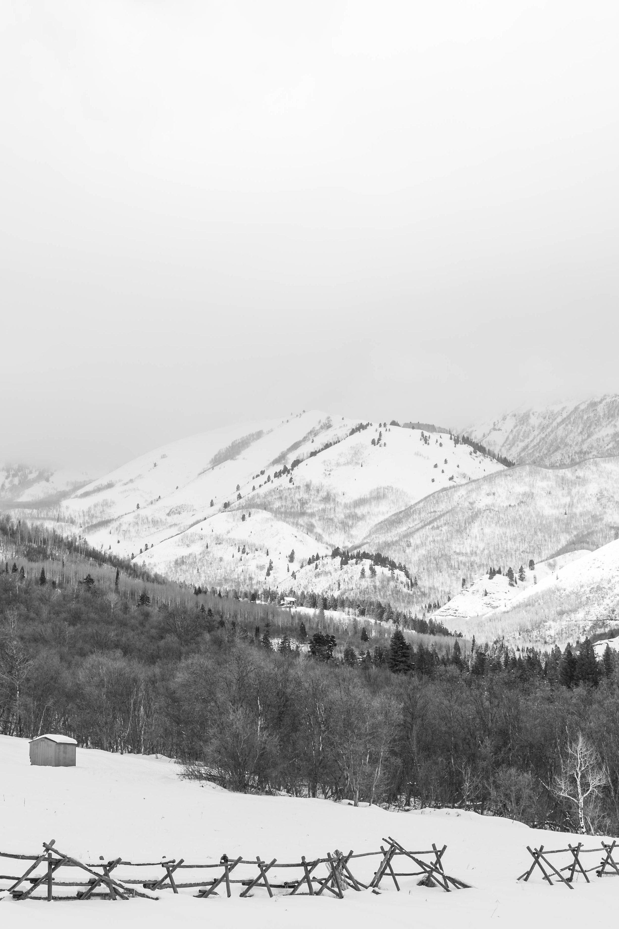 daidrismythephotography_snowshoeing-34.jpg