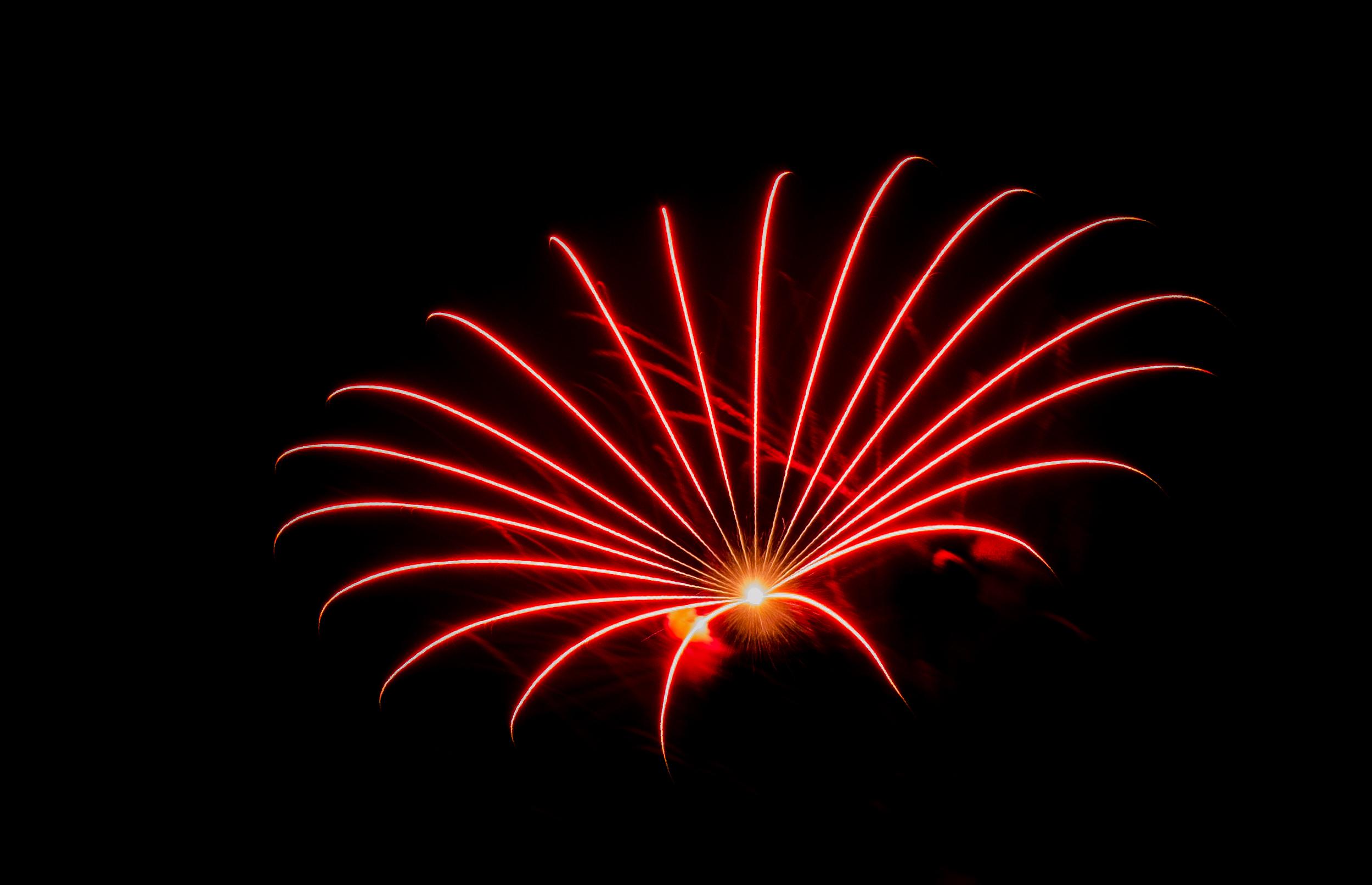 Fireworks Bloom  Nikon D7000 ISO 400 f/10 38mm 3 sec.