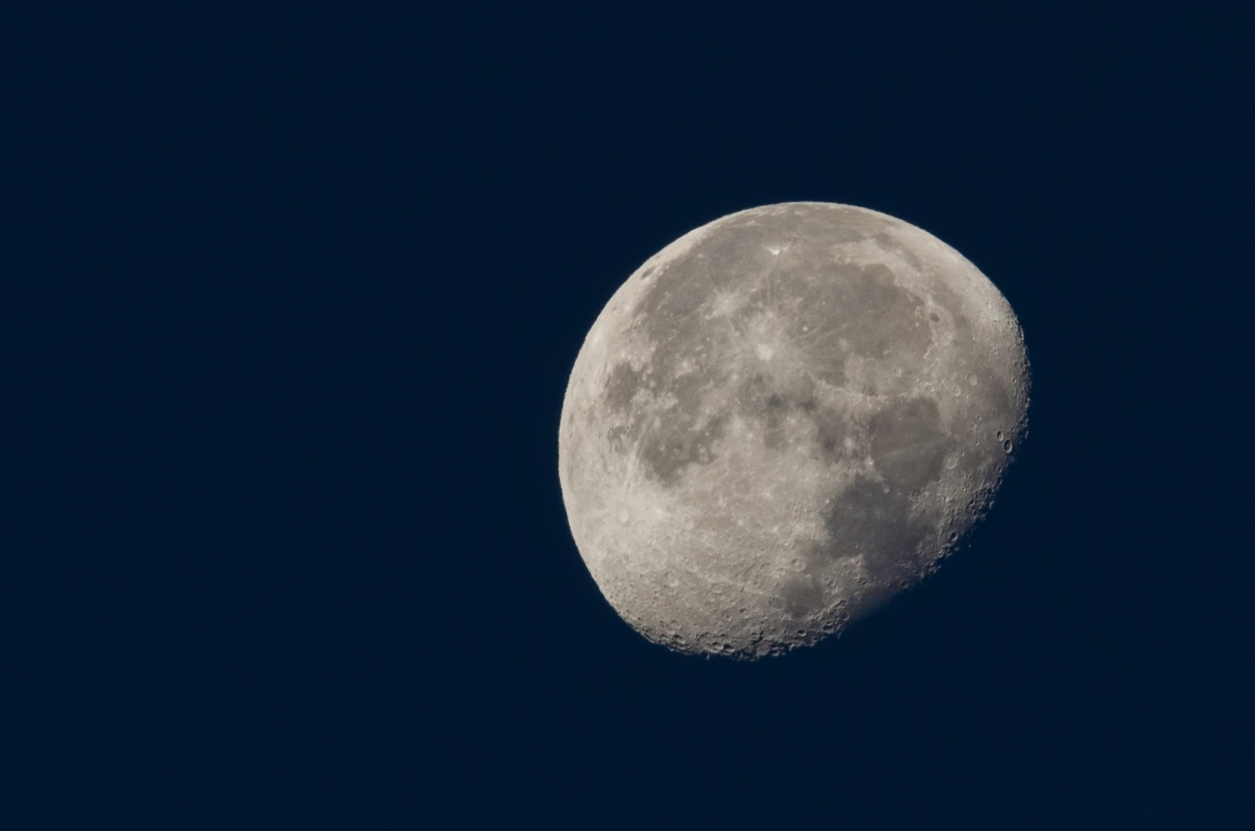 Wannng Moon 10012015  Nikon D7000 ISO 800 600mm f/18 1/250 sec.