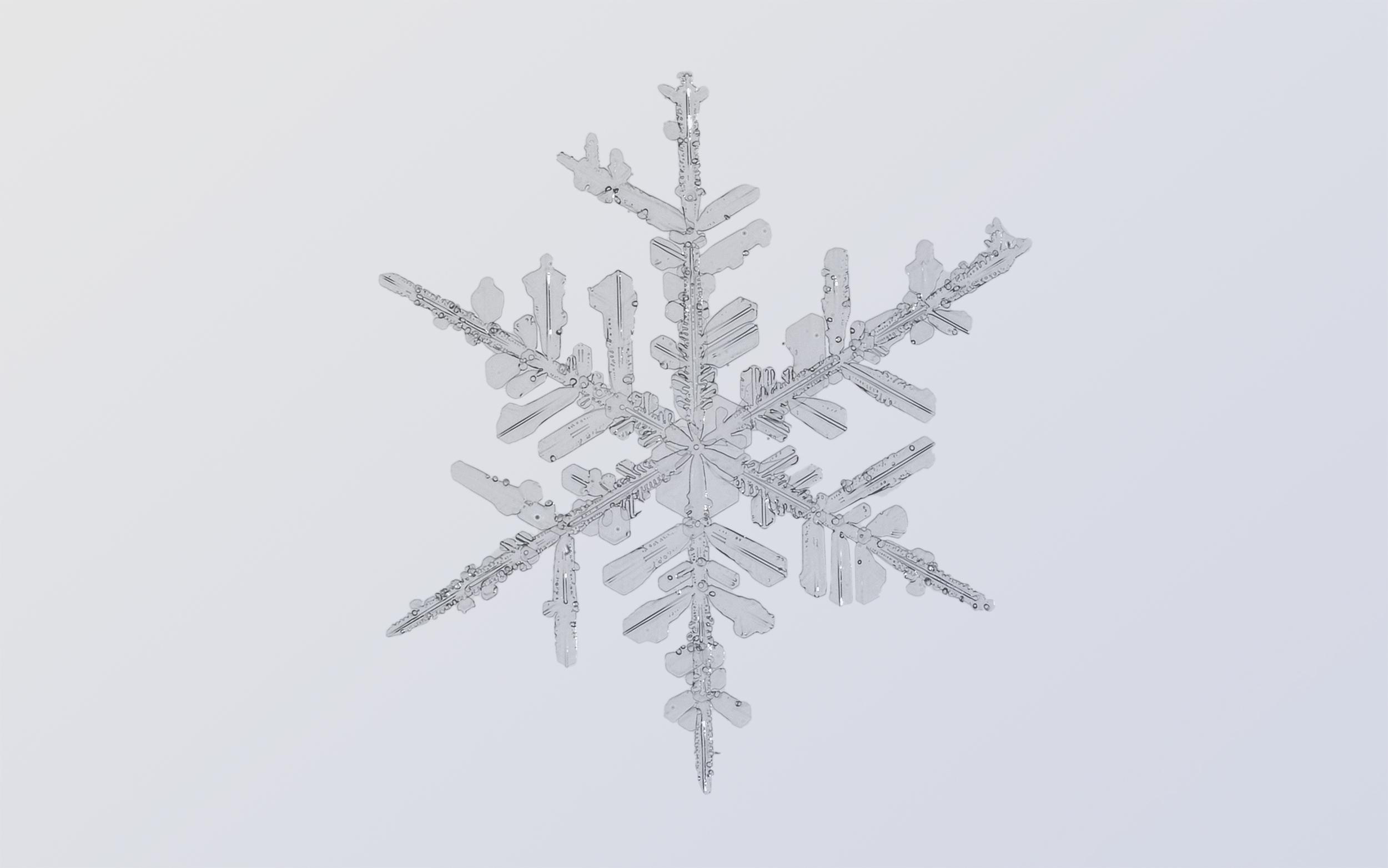 Snowflake Nº 1