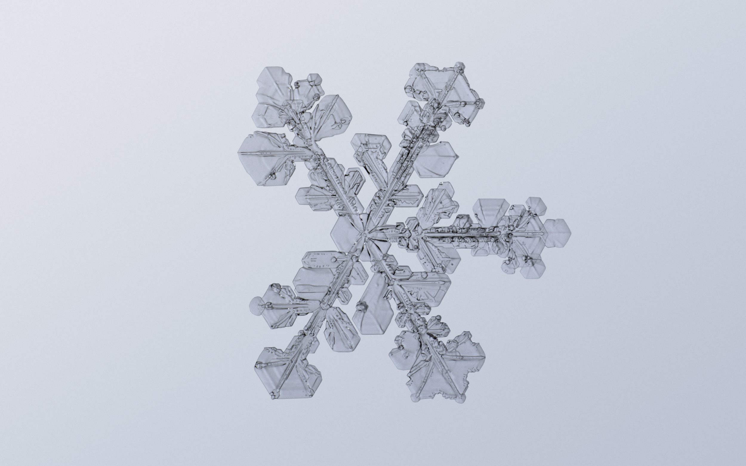 Snowflake Nº 2