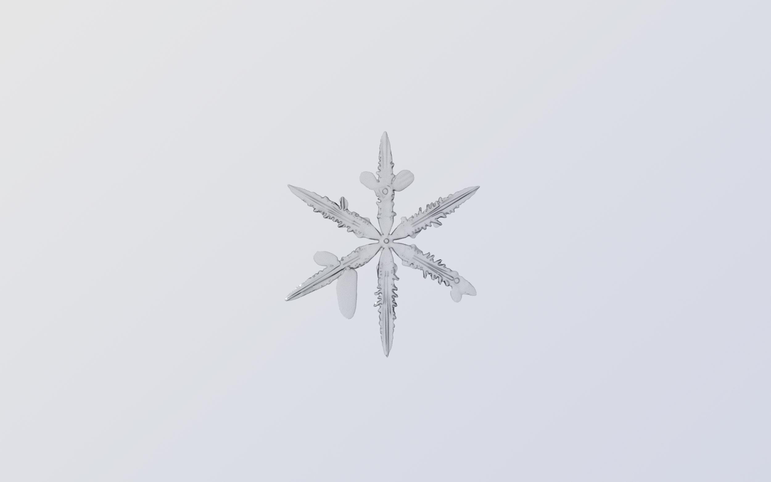 Snowflake Nº 3