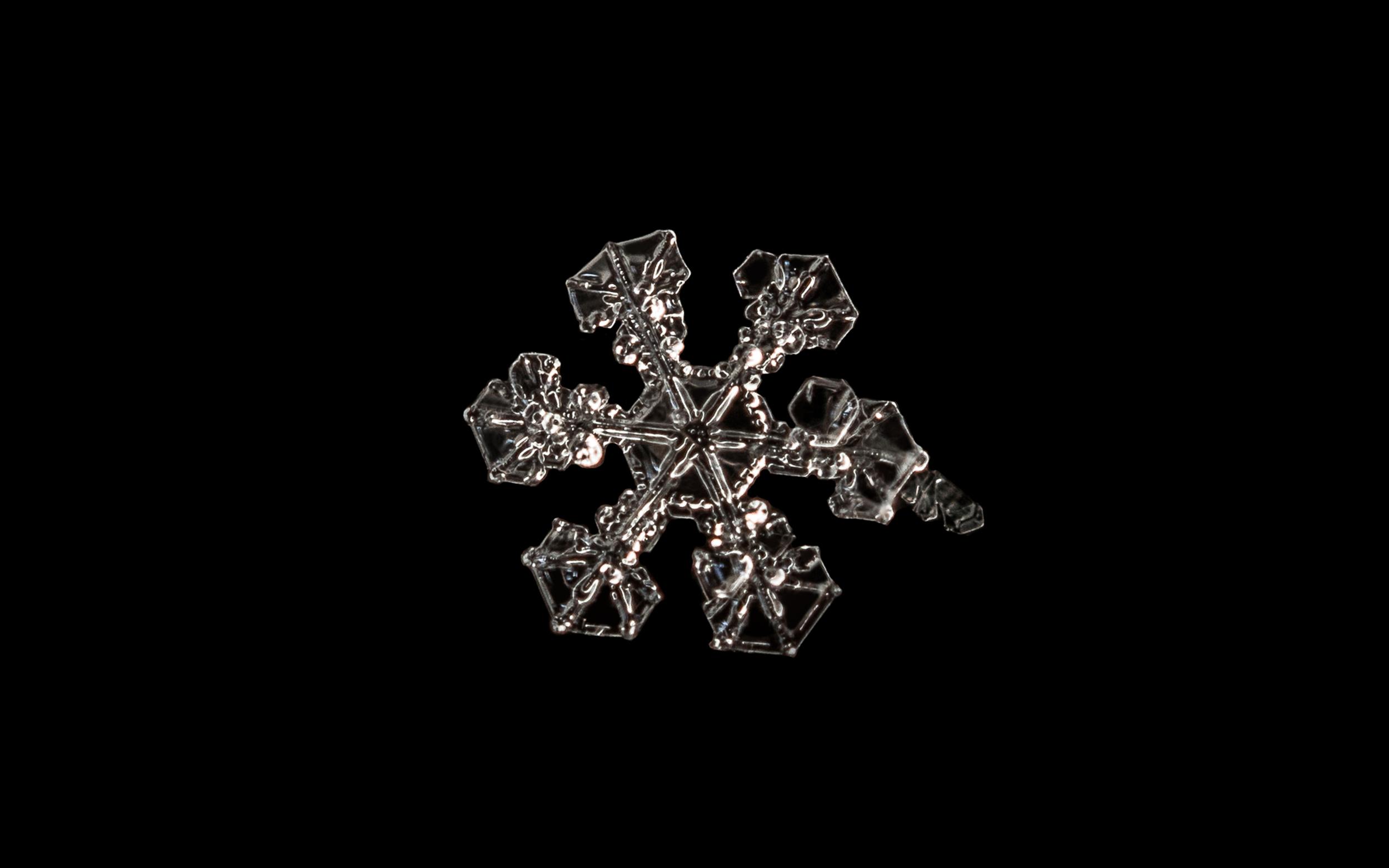 Snowflake Nº 8