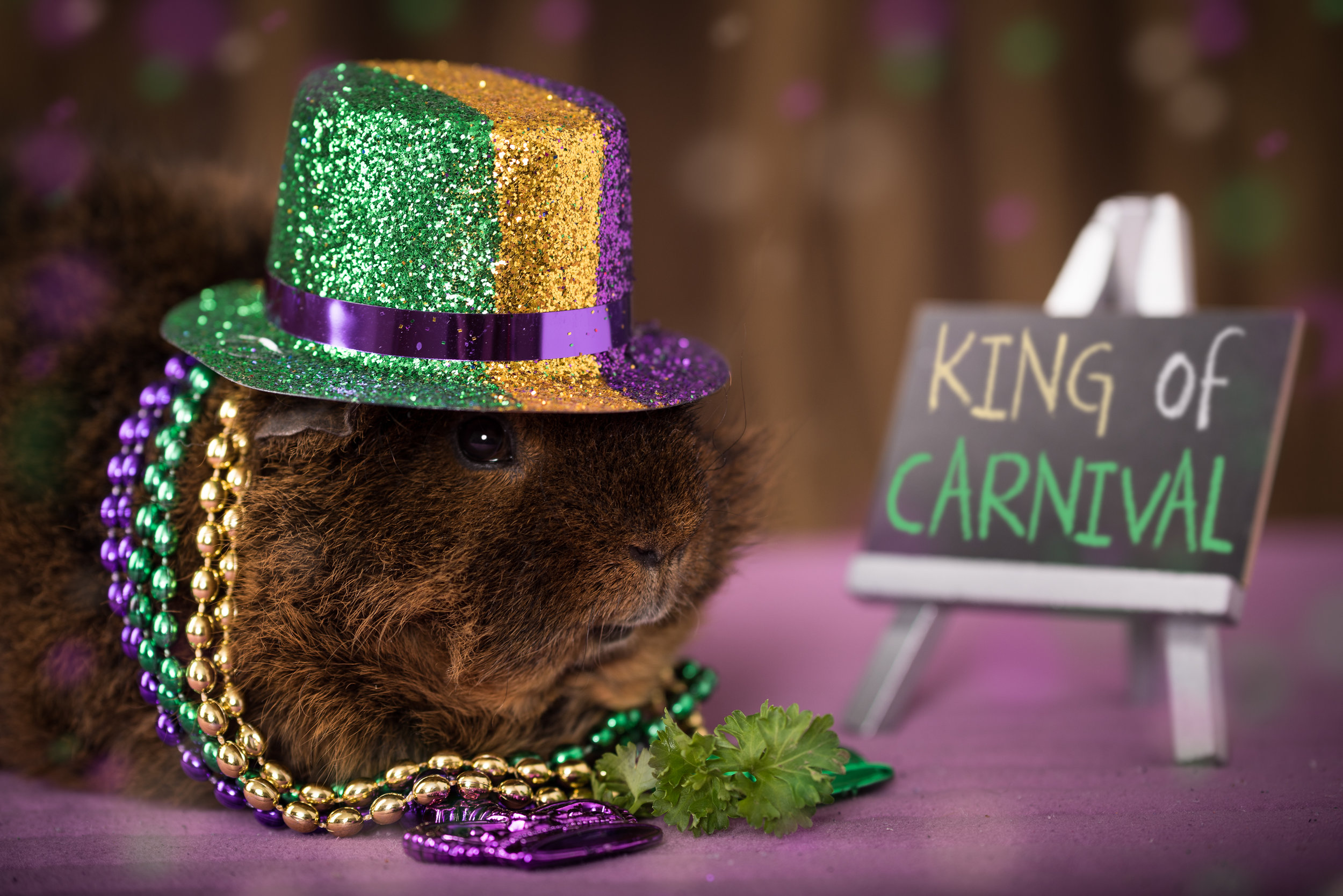 Wilbur, the King of Carnival