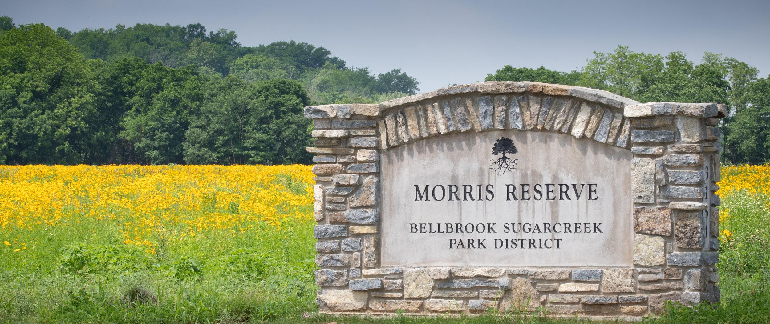Morris Reserve - Bellbrook, Ohio