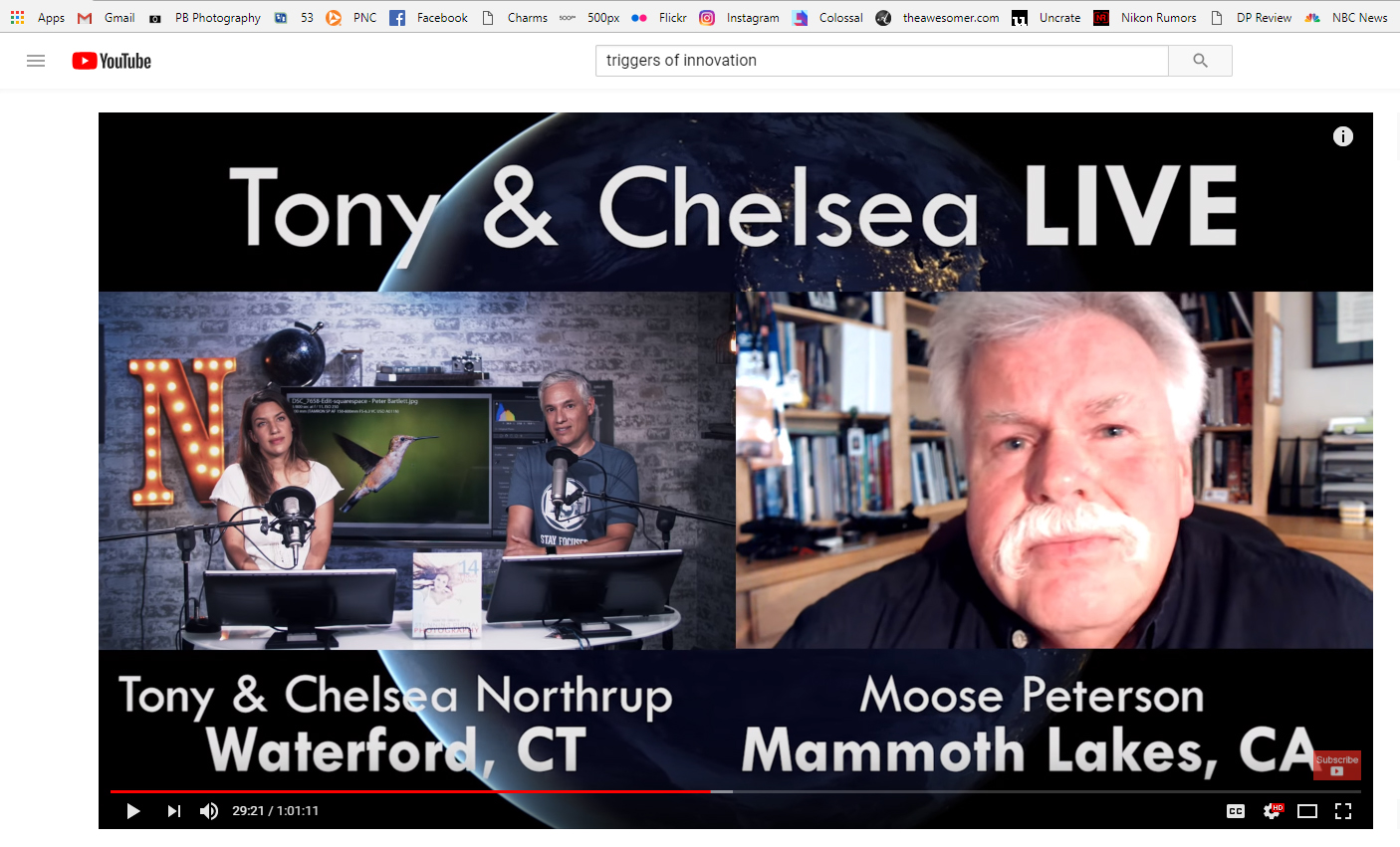 Moose Peterson Tony Chelsea Live