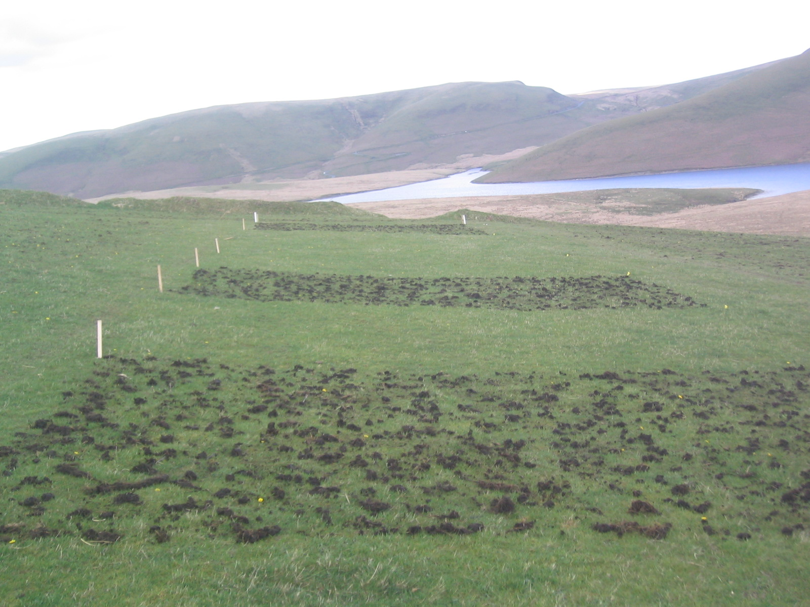 farmyard manure treatments