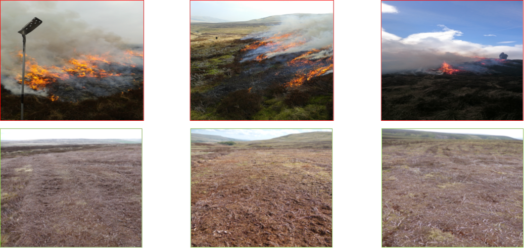 burning & mowing treatments at the three sites [from left to right, Nidderdale-mossdale-whitendale]