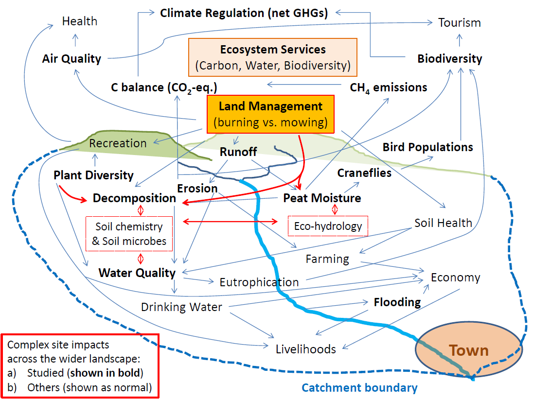 Schematic network of the main linkages between management impacts on plant-soil-water processes and associated key ecosystem services aspects (related to carbon, CO2-equivalents (CO2-eq), greenhouse gas emissions (GHG) water and biodiversity) across a generic catchment area containing upland areas with blanket bog. Processes and parameters investigated in this project are shown in bold, dashed red line outlines represent identified important but so far understudied processes (i.e. soil chemistry, soil microbes and eco-hydrology) linking key aspects. Note that the impacts are reaching far beyond the upland area with indirect effects on livelihoods in cities connected by water, food and economy.