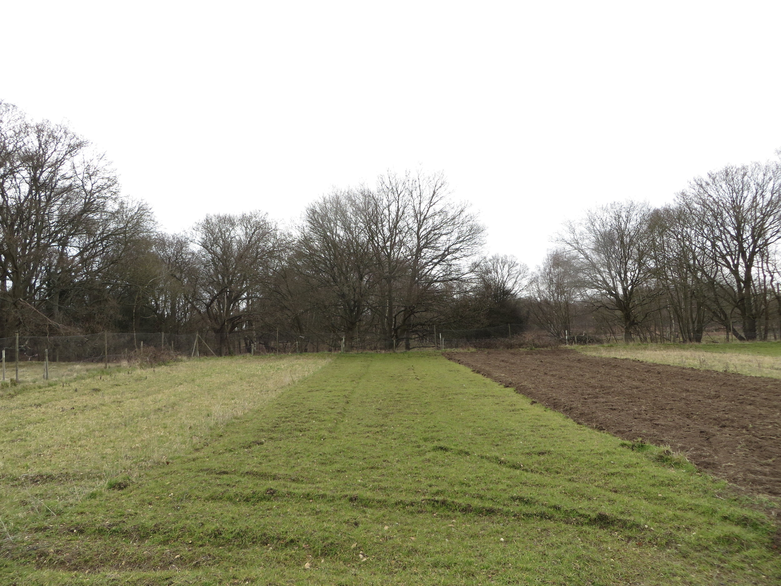 march 2016: from left to right, cultivation strips ploughed in may, October & march