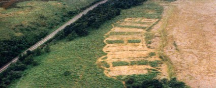 aerial view, circa 1994, of bracken control experiment at hordron edge, peak district