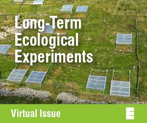 Tenth Anniversary Virtual Issue.jpg