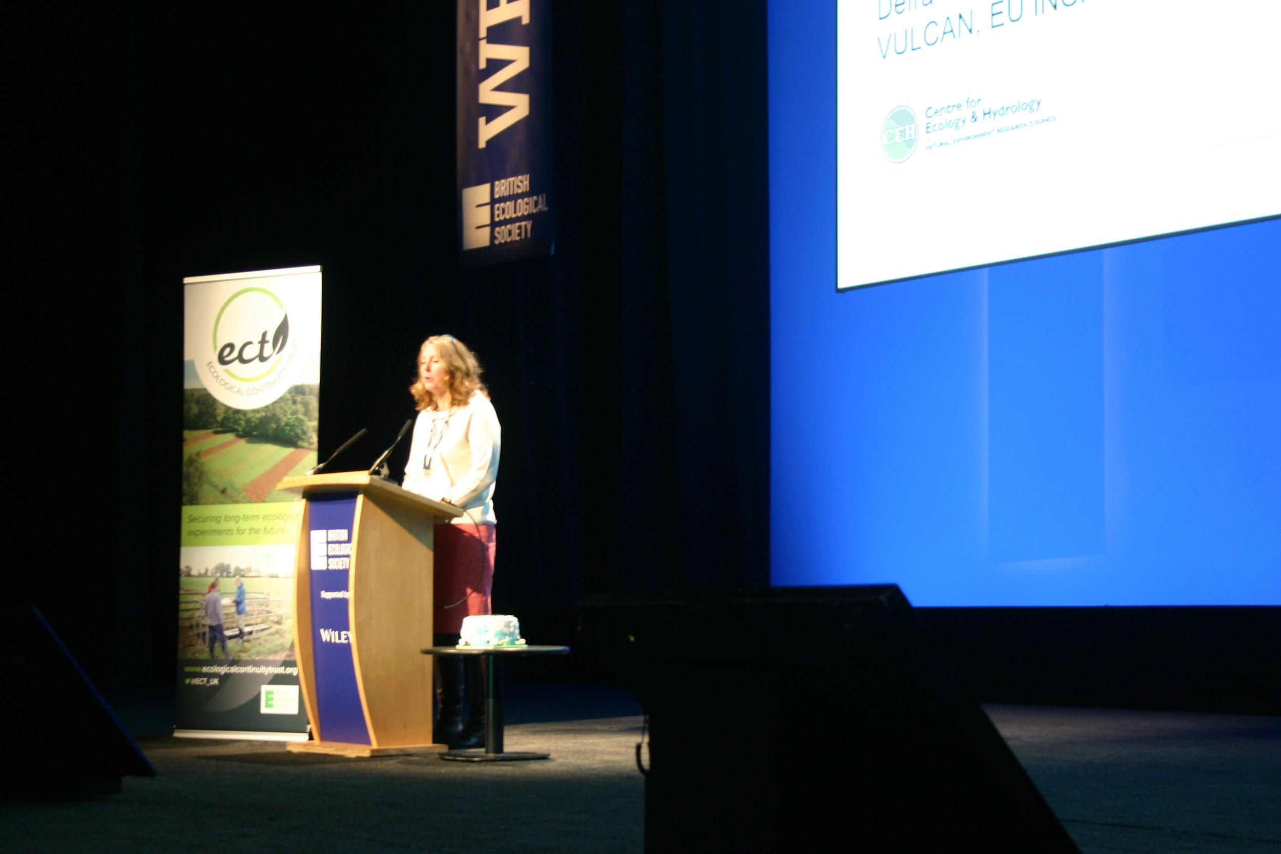 bes 2018 conference, Birmingham - keynote speaker prof bridget emmett