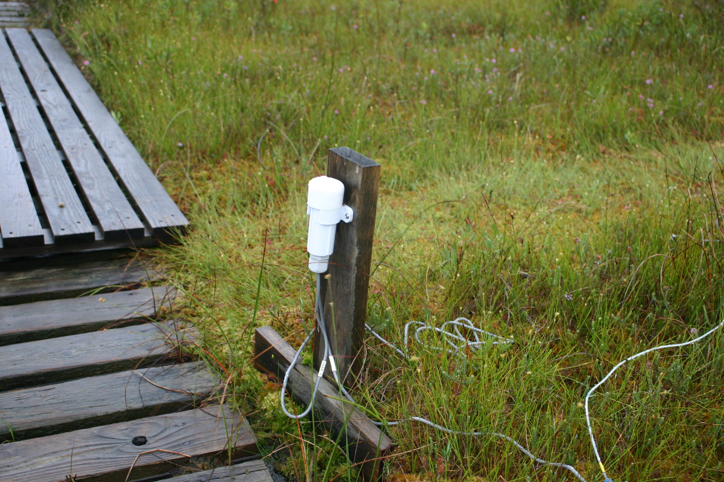 one of the new plot data-loggers, funded via an ect small grant