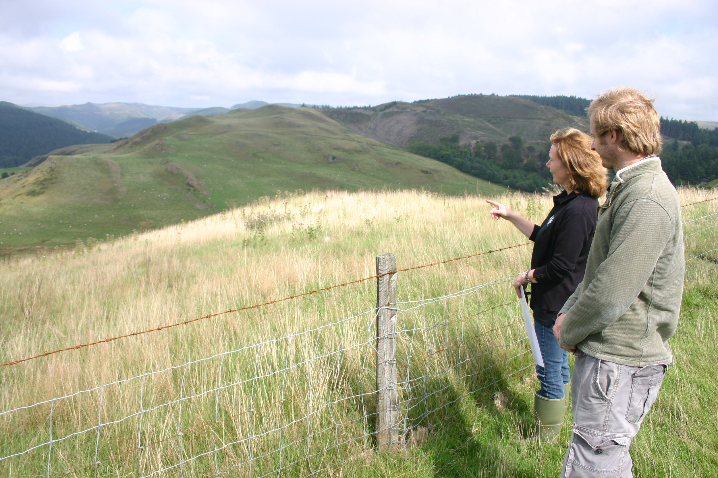 PI mariecia fraser  surveys the unmanaged 'wilding' plot at brignant long-term experiment in mid-wales