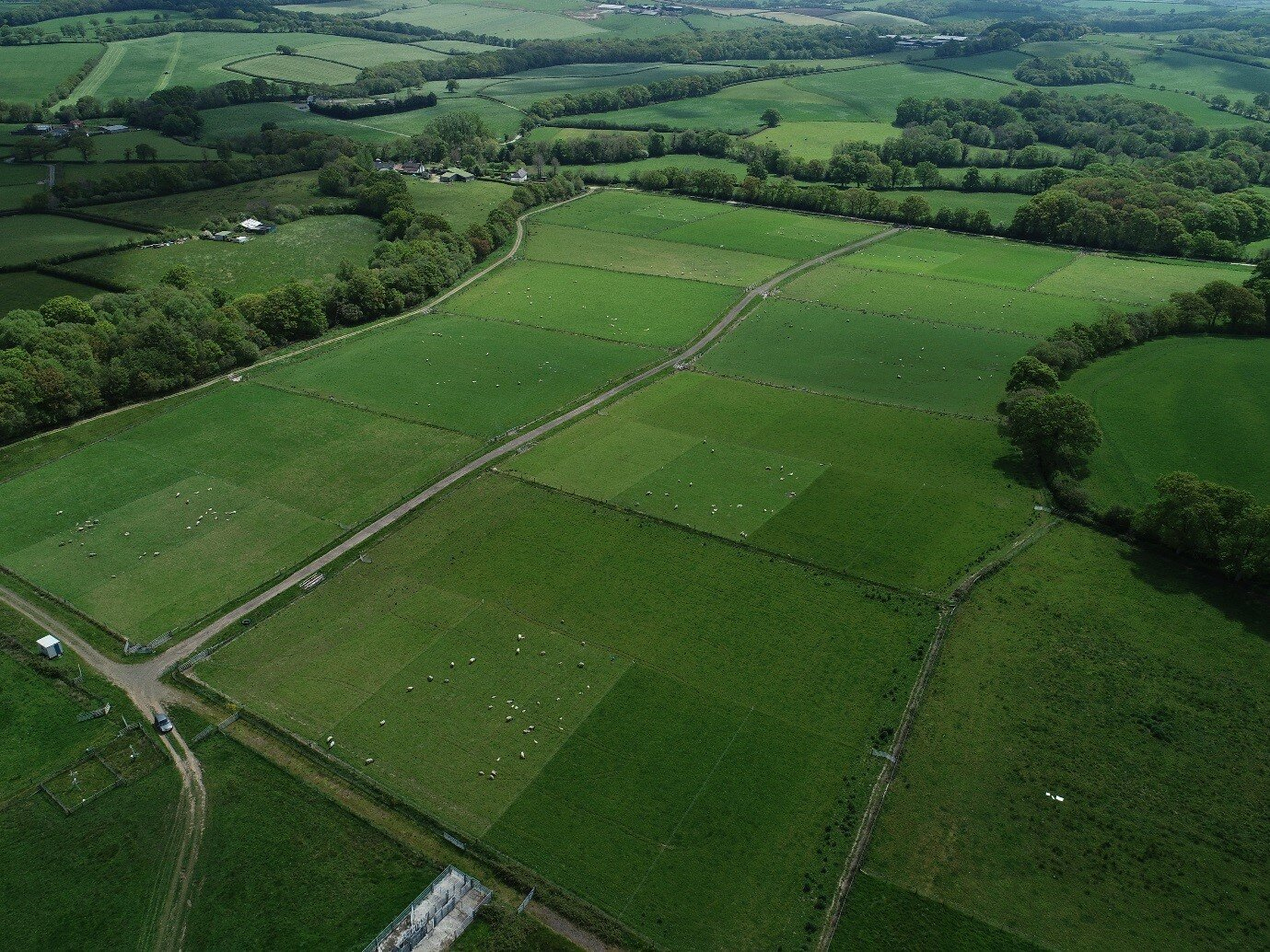 aerial view of rowden plots
