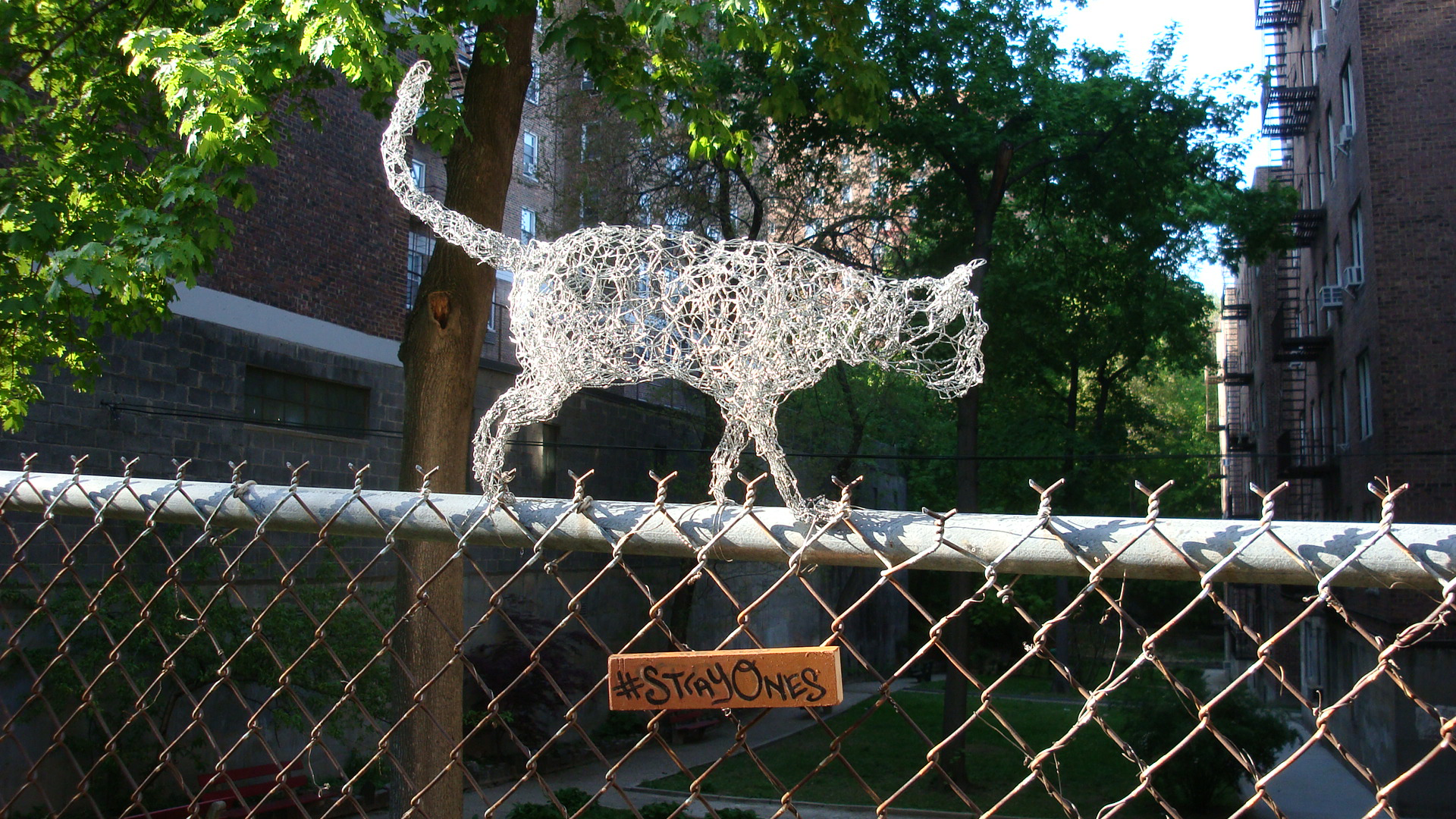StrayOnes, On The Fence